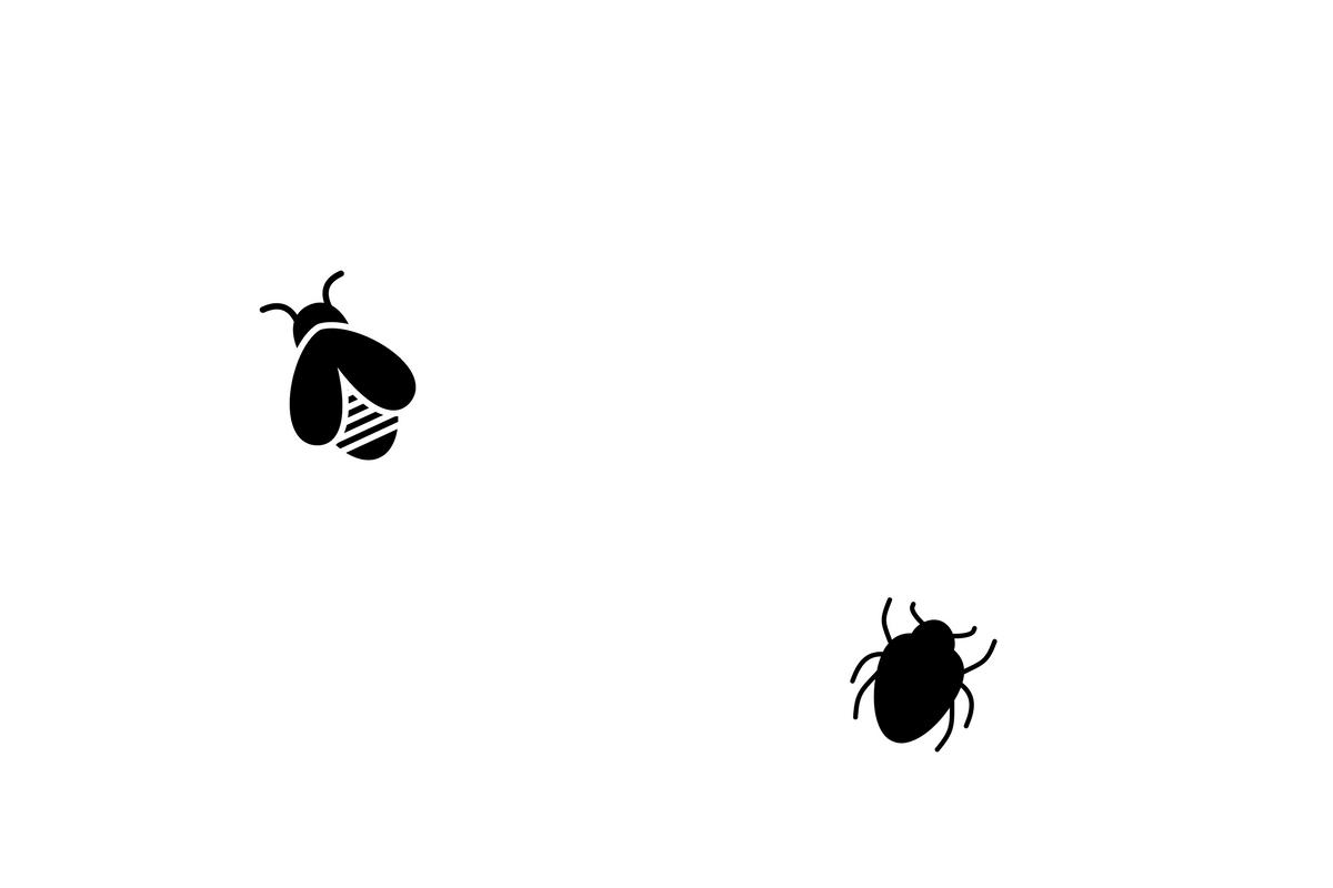 虫はでるの?